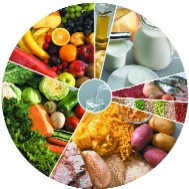 Saiba as alterações na nova roda dos alimentos