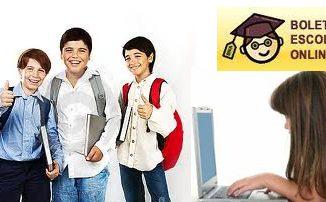 Boletim escolar 2013 Online - Saiba como consultar